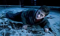 Harry Potter and the Order of the Phoenix - 8 x 10 Color Photo #53