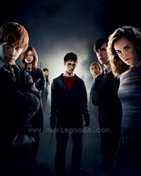 Harry Potter and the Order of the Phoenix - 8 x 10 Color Photo #57