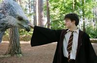 Harry Potter and the Prisoner of Azkaban - 8 x 10 Color Photo #25