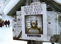 Harry Potter and the Prisoner of Azkaban - 8 x 10 Color Photo #40