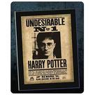 Harry Potter and the Sorcerer's Stone - Undesirable No. 1 Mounted Sign