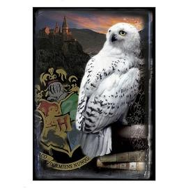 Harry Potter and the Sorcerer's Stone - Hogwarts Castle and Hedwig Puzzle