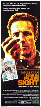 Hide in Plain Sight - 14 x 36 Movie Poster - Insert Style A