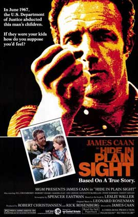 Hide in Plain Sight - 11 x 17 Movie Poster - Style A