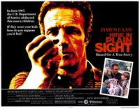 Hide in Plain Sight - 11 x 14 Movie Poster - Style A