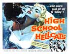High School Hellcats - 22 x 28 Movie Poster - Half Sheet Style A