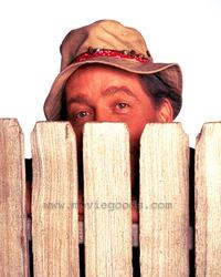 Home Improvement - 8 x 10 Color Photo #21