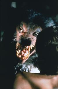 Howling IV: The Original Nightmare - 8 x 10 Color Photo #2