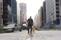 I Am Legend - 8 x 10 Color Photo #3