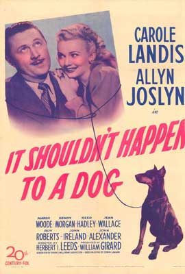 It Shouldn't Happen to a Dog - 27 x 40 Movie Poster - Style A