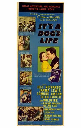 It's a Dog's Life - 11 x 17 Movie Poster - Style A