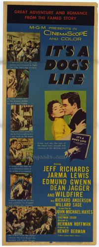 It's a Dog's Life - 43 x 62 Movie Poster - Bus Shelter Style A