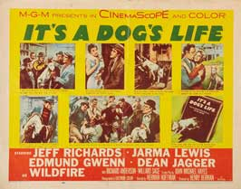 It's a Dogs Life - 22 x 28 Movie Poster - Half Sheet Style A