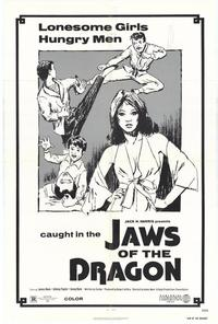 Jaws of the Dragon - 11 x 17 Movie Poster - Style A