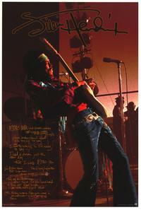 Jimi Hendrix - Music Poster - 24 x 36 - Style C