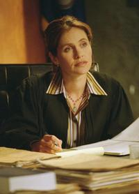 Judging Amy - 8 x 10 Color Photo #28