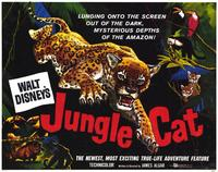 Jungle Cat - 11 x 14 Movie Poster - Style A