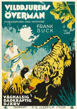 Jungle Cavalcade - 27 x 40 Movie Poster - Swedish Style A