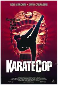 Karate Cop - 27 x 40 Movie Poster - Style A