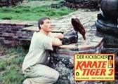 Kickboxer - 11 x 14 Movie Poster - Style O