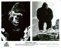 King Kong Lives - 8 x 10 B&W Photo #4