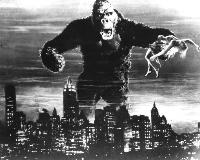 King Kong - 8 x 10 B&W Photo #24