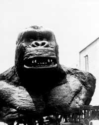 King Kong - 8 x 10 B&W Photo #26