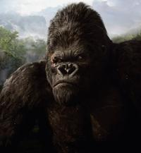 King Kong - 8 x 10 Color Photo #61