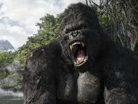 King Kong - 8 x 10 Color Photo #11