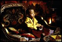 Kundun - 8 x 10 Color Photo #12