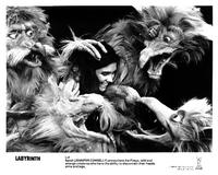 Labyrinth - 8 x 10 B&W Photo #3