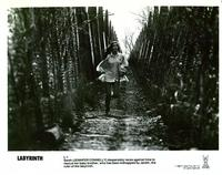 Labyrinth - 8 x 10 B&W Photo #4