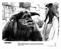 Labyrinth - 8 x 10 B&W Photo #5