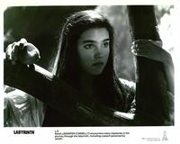 Labyrinth - 8 x 10 B&W Photo #6