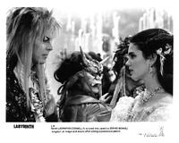 Labyrinth - 8 x 10 B&W Photo #7