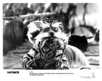 Labyrinth - 8 x 10 B&W Photo #8