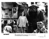 Labyrinth - 8 x 10 B&W Photo #9