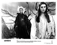 Labyrinth - 8 x 10 B&W Photo #10