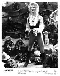 Labyrinth - 8 x 10 B&W Photo #12