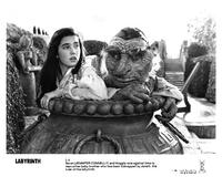 Labyrinth - 8 x 10 B&W Photo #13