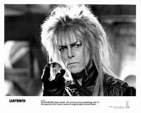 Labyrinth - 8 x 10 B&W Photo #15