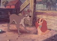 Lady and the Tramp - 8 x 10 Color Photo #3
