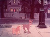 Lady and the Tramp - 8 x 10 Color Photo #5