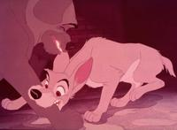 Lady and the Tramp - 8 x 10 Color Photo #7