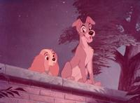 Lady and the Tramp - 8 x 10 Color Photo #15