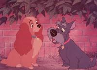 Lady and the Tramp - 8 x 10 Color Photo #16