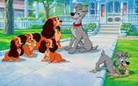 Lady and the Tramp - 8 x 10 Color Photo #23