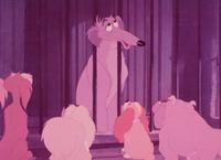 Lady and the Tramp - 8 x 10 Color Photo #6
