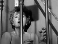 Lady in a Cage - 8 x 10 B&W Photo #2