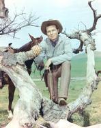 Laramie - Laramie Cast posed on Tree Branch Cowboy Outfit